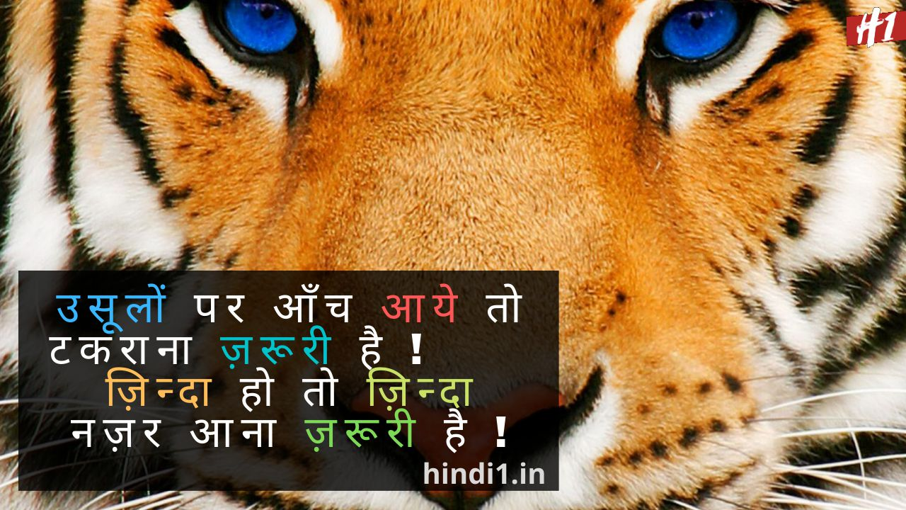 Attitude Quotes In Hindi5