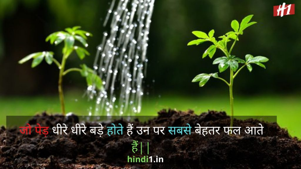 Nature Thoughts In Hindi