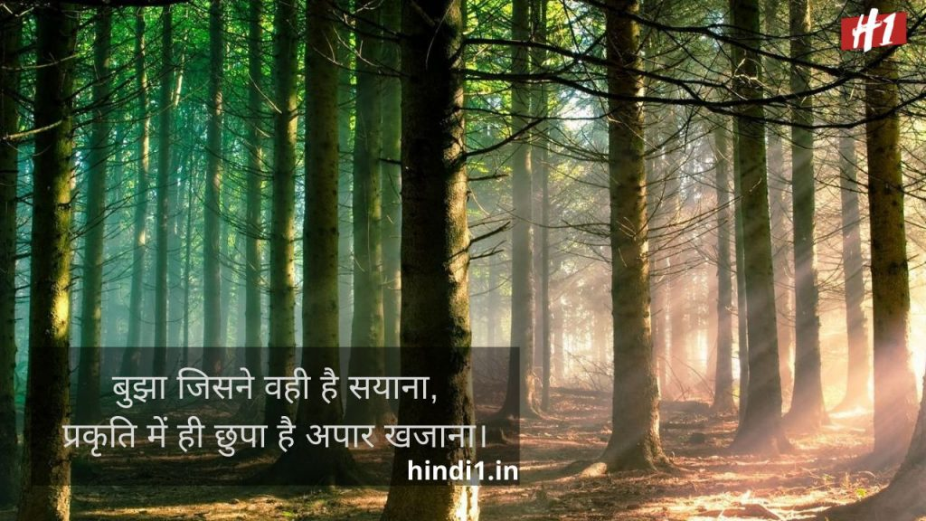Nature Quotes In Hindi3