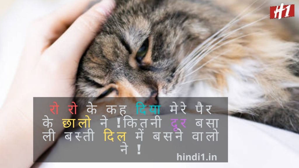 Pain Quotes In Hindi6