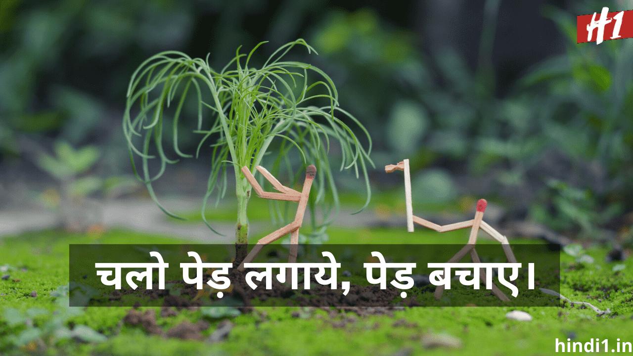 Ped Lagao Desh Bachao Slogan In Hindi4