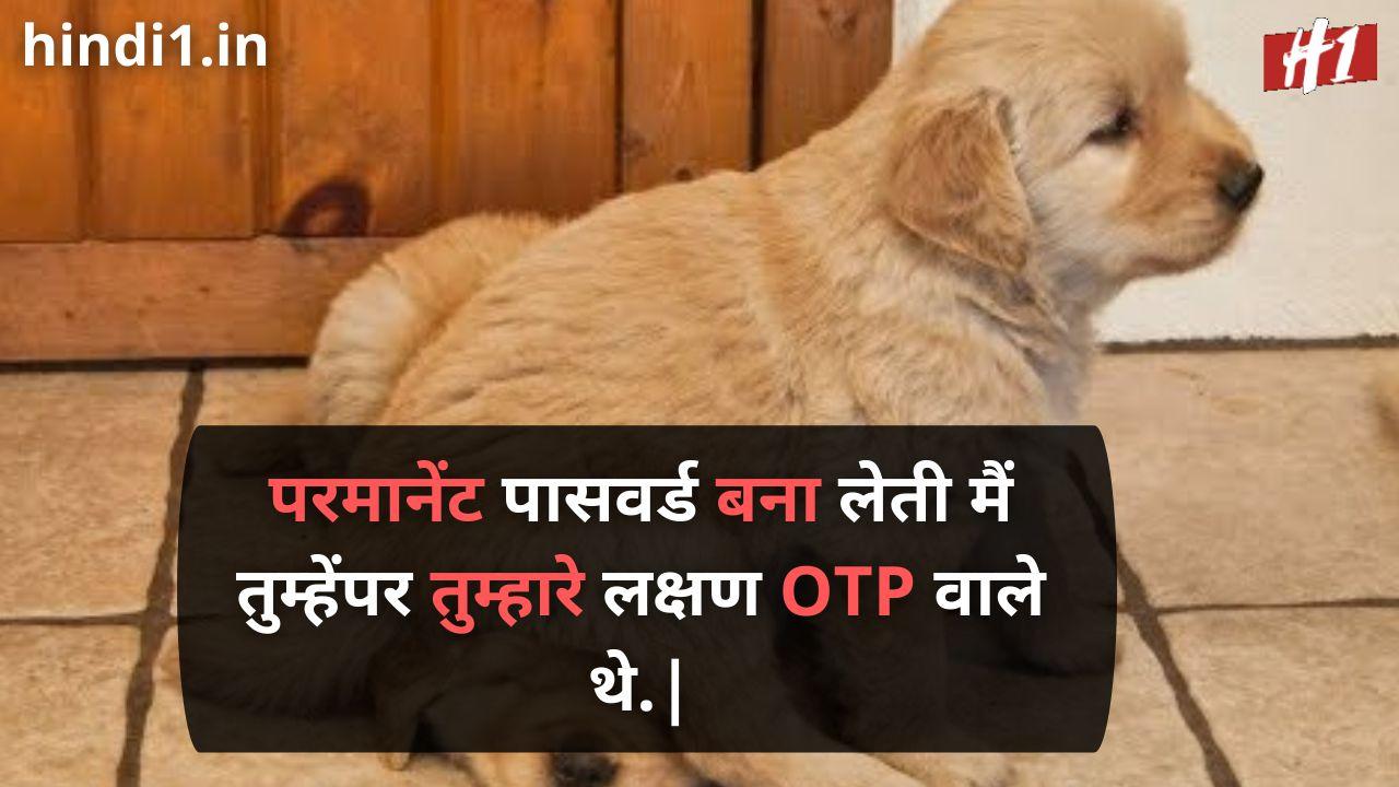 funny status in hindi 2 line5