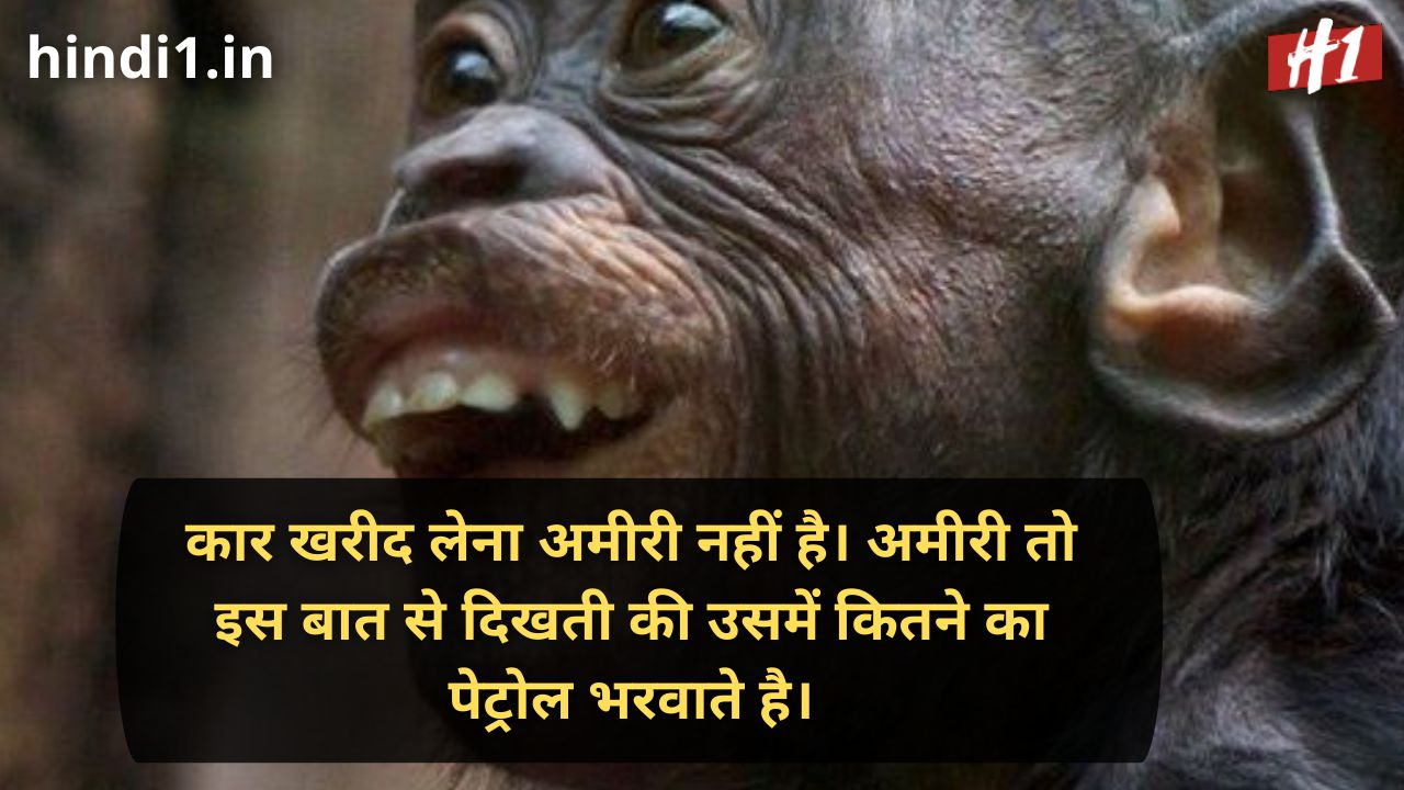 funny status lines in hindi2