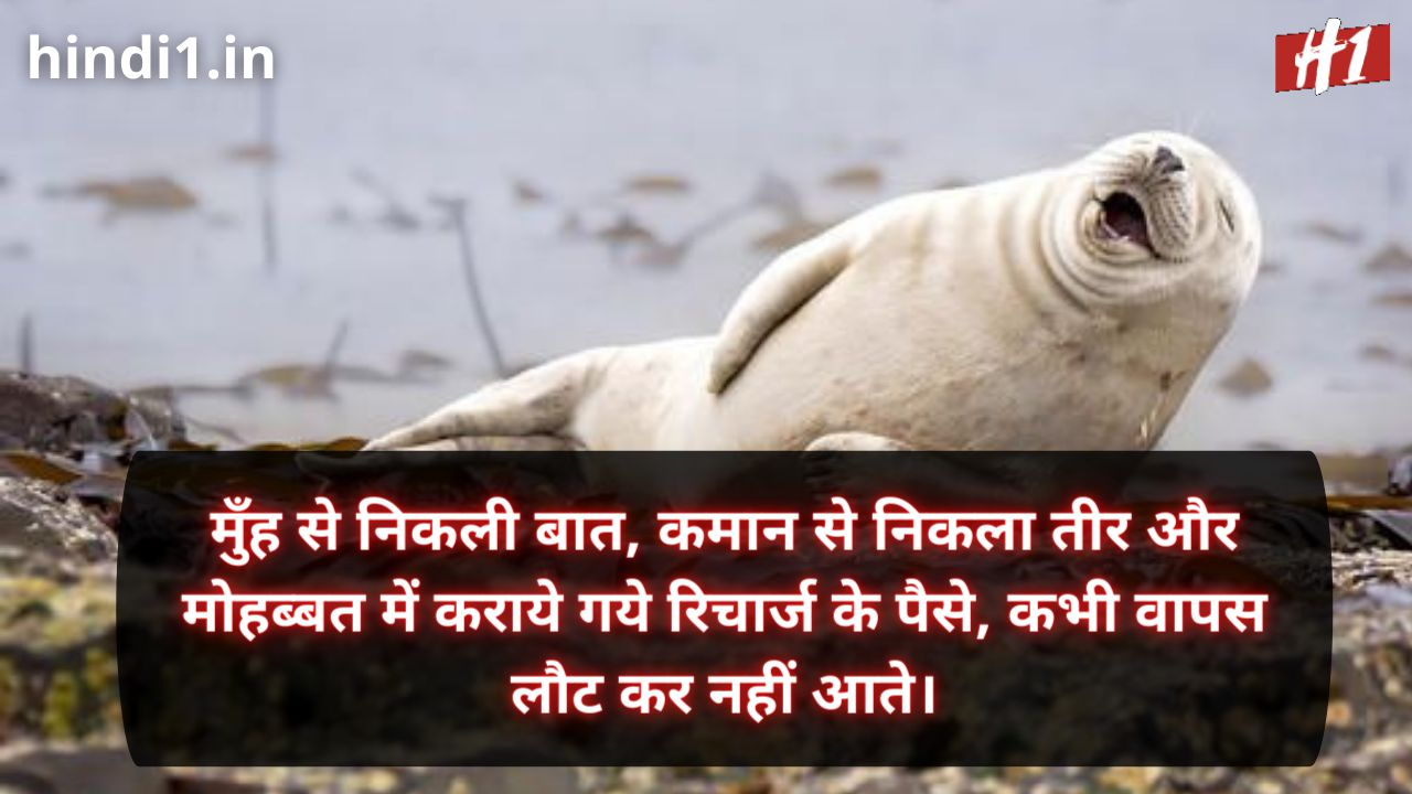funny status lines in hindi3