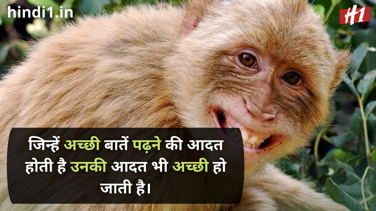 funny status lines in hindi5