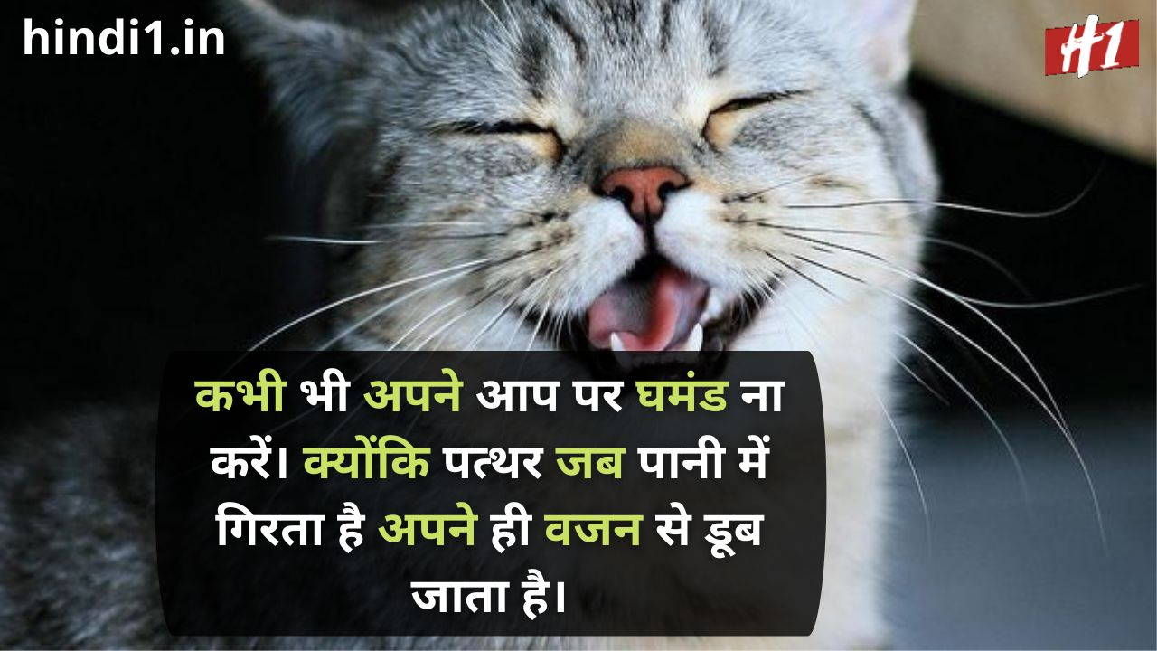 funny status in hindi for boy1