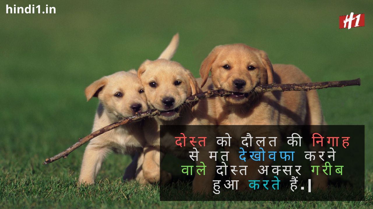 Friendship Thoughts In Hindi1