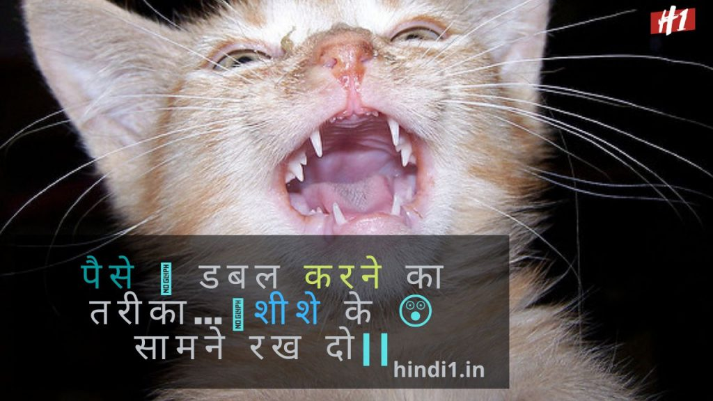 Funny Quotes In Hindi For Girl And Boy