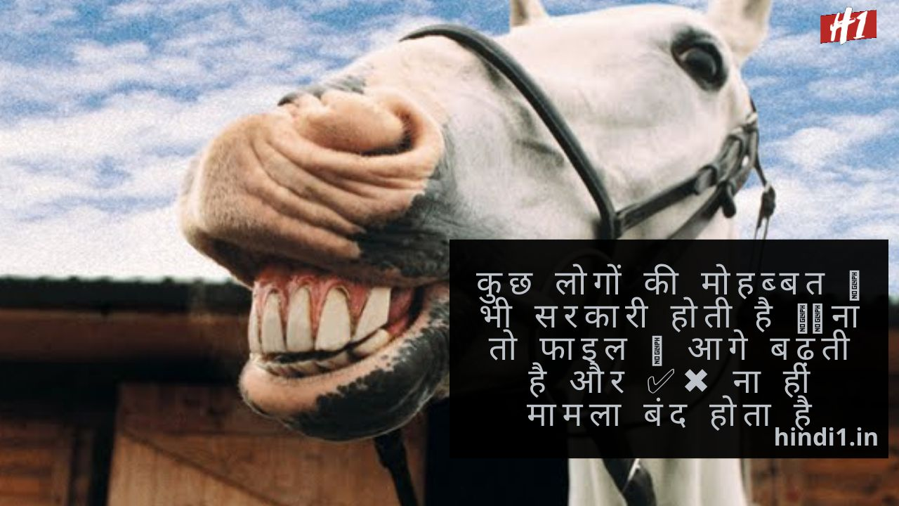 Funny Quotes In Hindi For Girl And Boy2