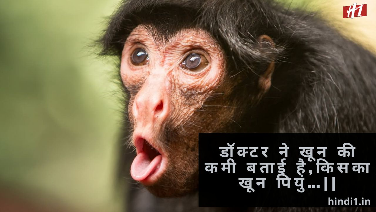 Funny Quotes In Hindi For Whatsapp And Facebook