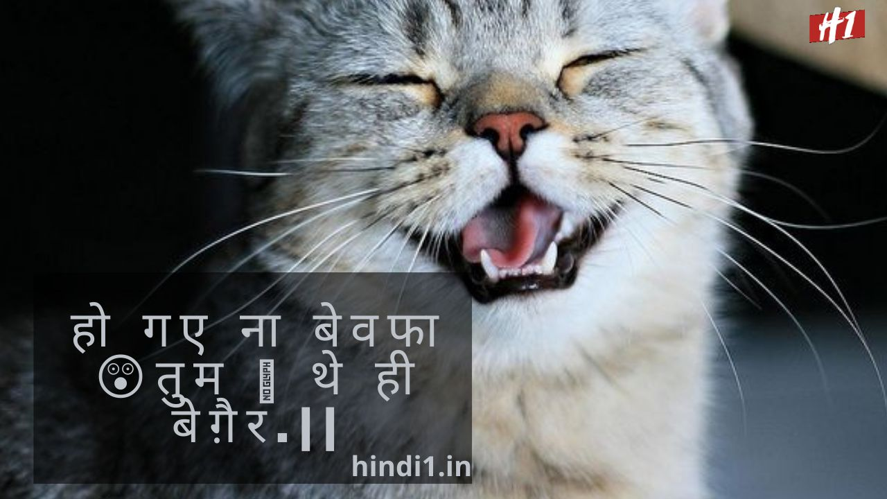 Funny Quotes In Hindi2