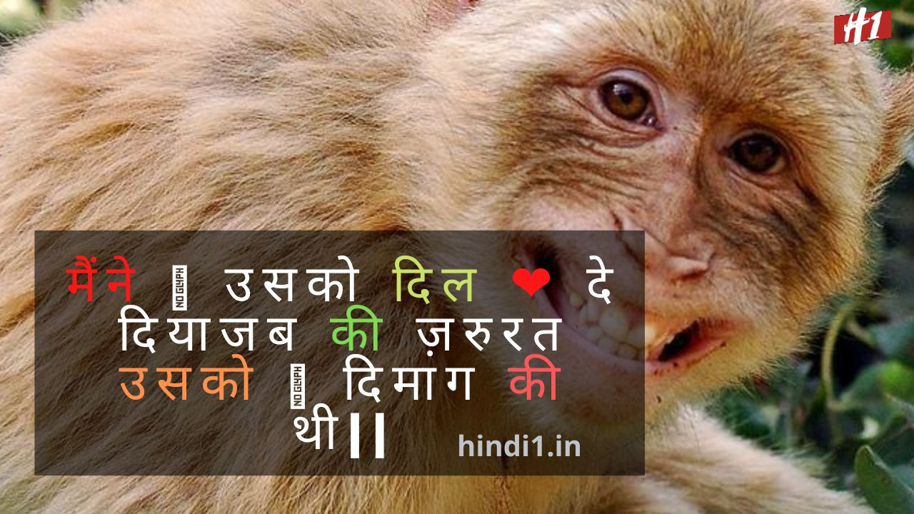 Funny Quotes In Hindi3