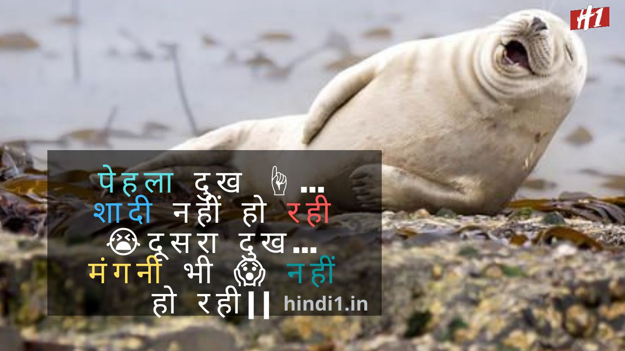 Top Funny Quotes In Hindi