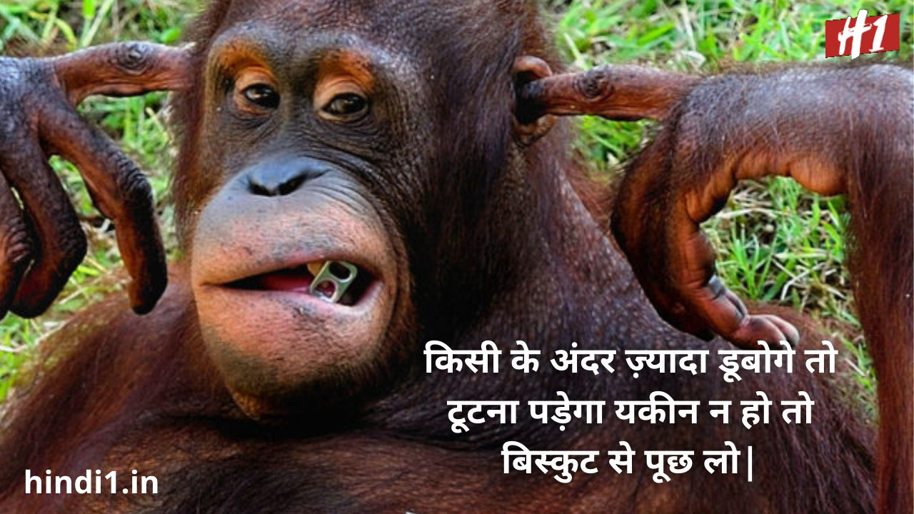 instagram funny status in hindi4