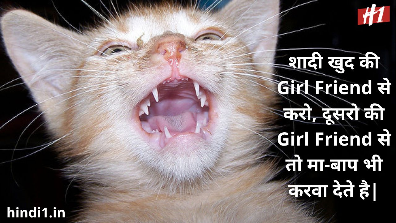 funny status in hindi for boy2