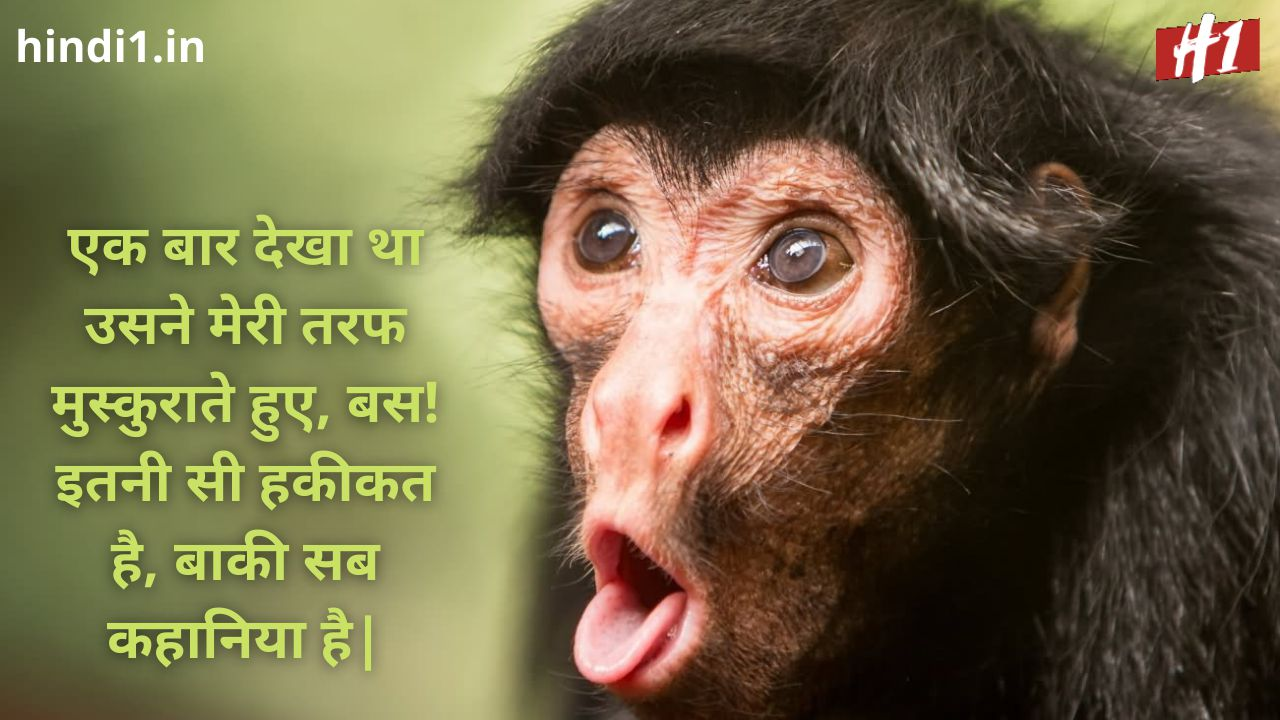 funny status in hindi one line7