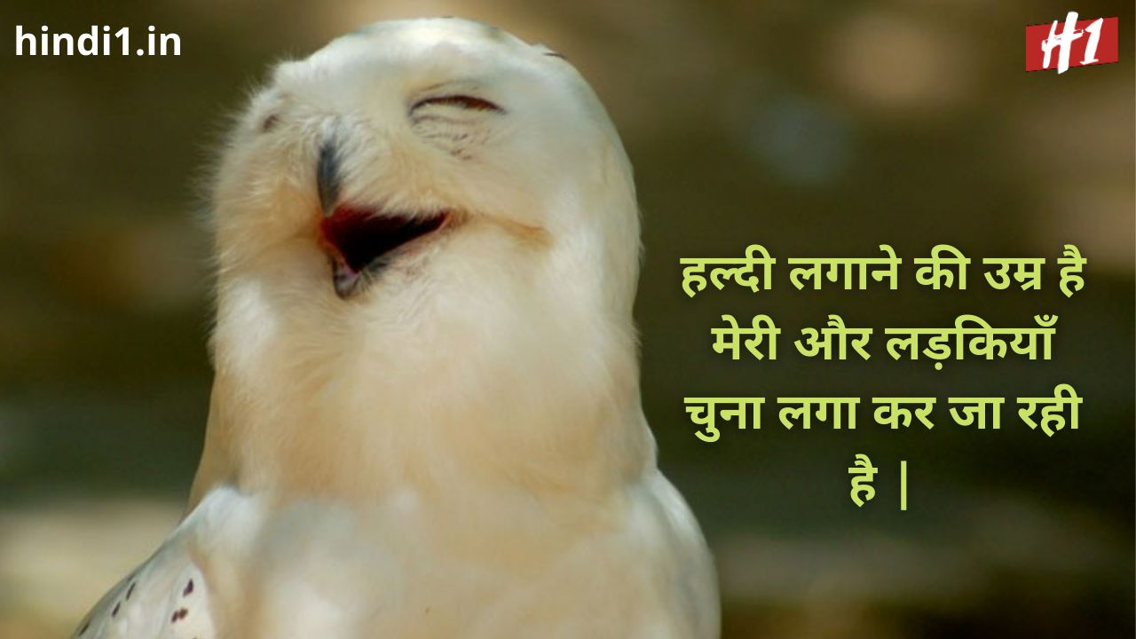funny status in hindi one line8