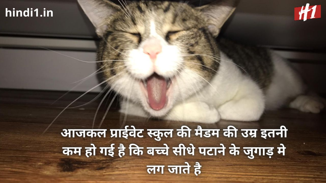 funny status in hindi one line4