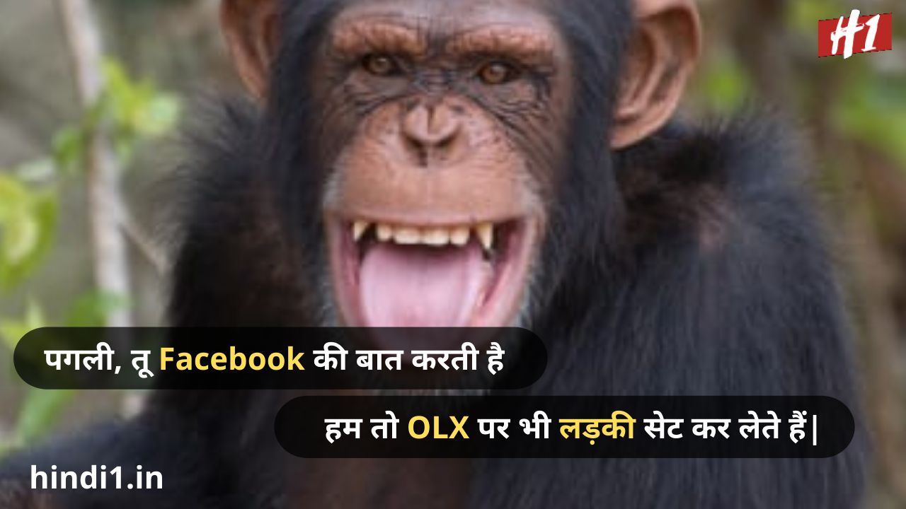 funny status in hindi one line3