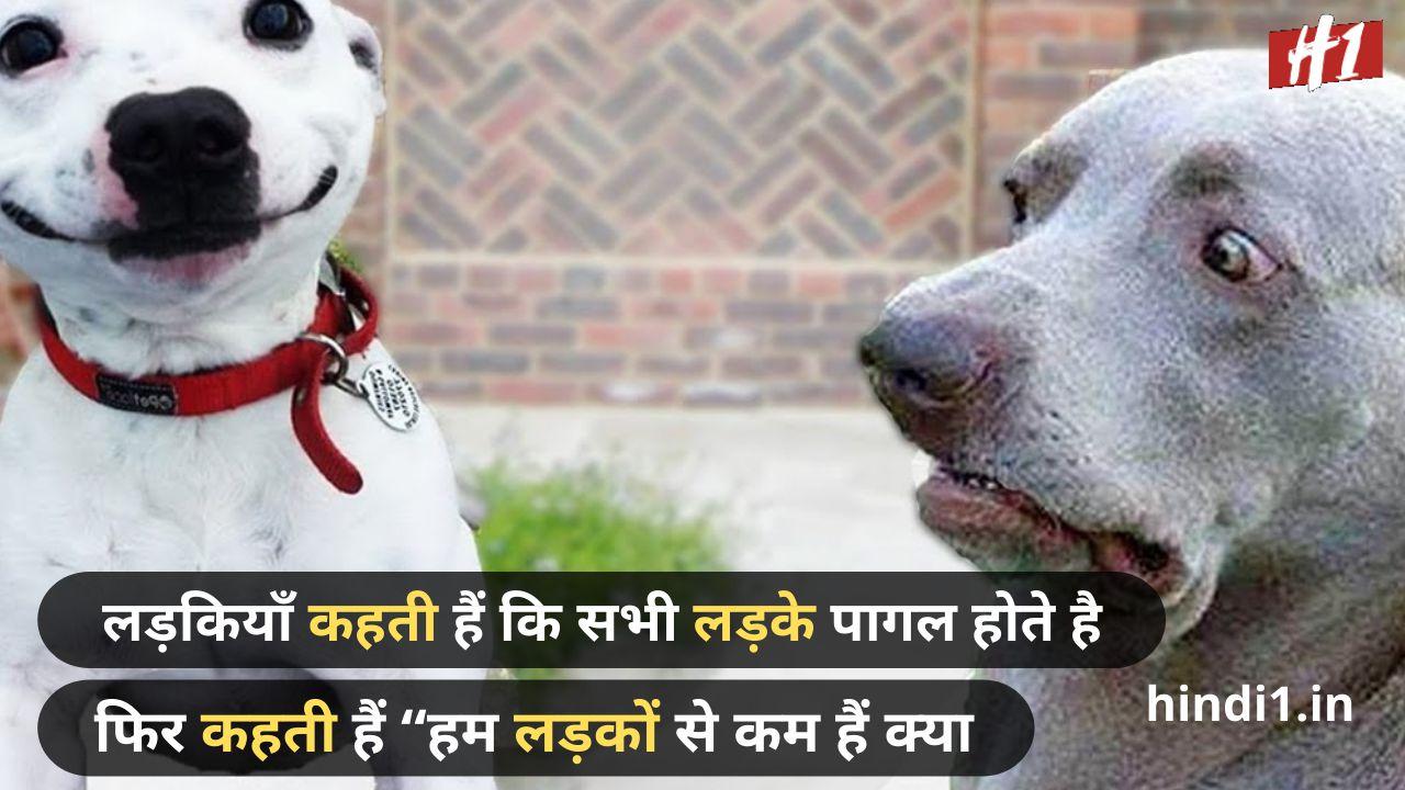 funny attitude status in hindi4