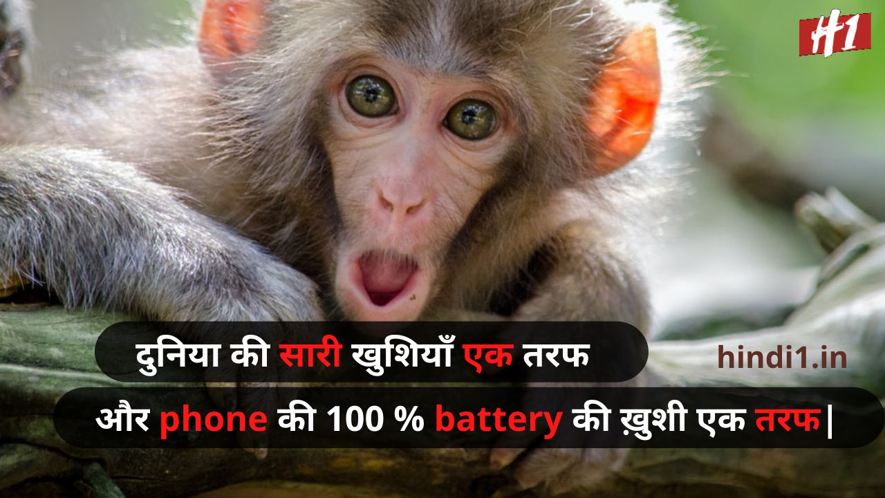 funny status in hindi 2 line7