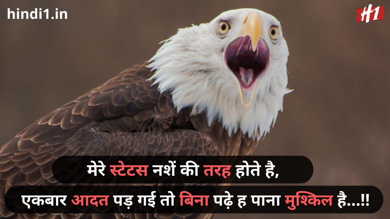 desi status in hindi2