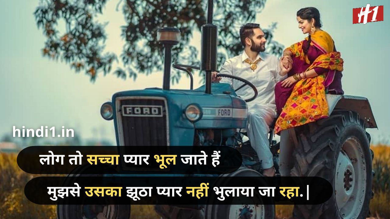royal attitude status in hindi text4
