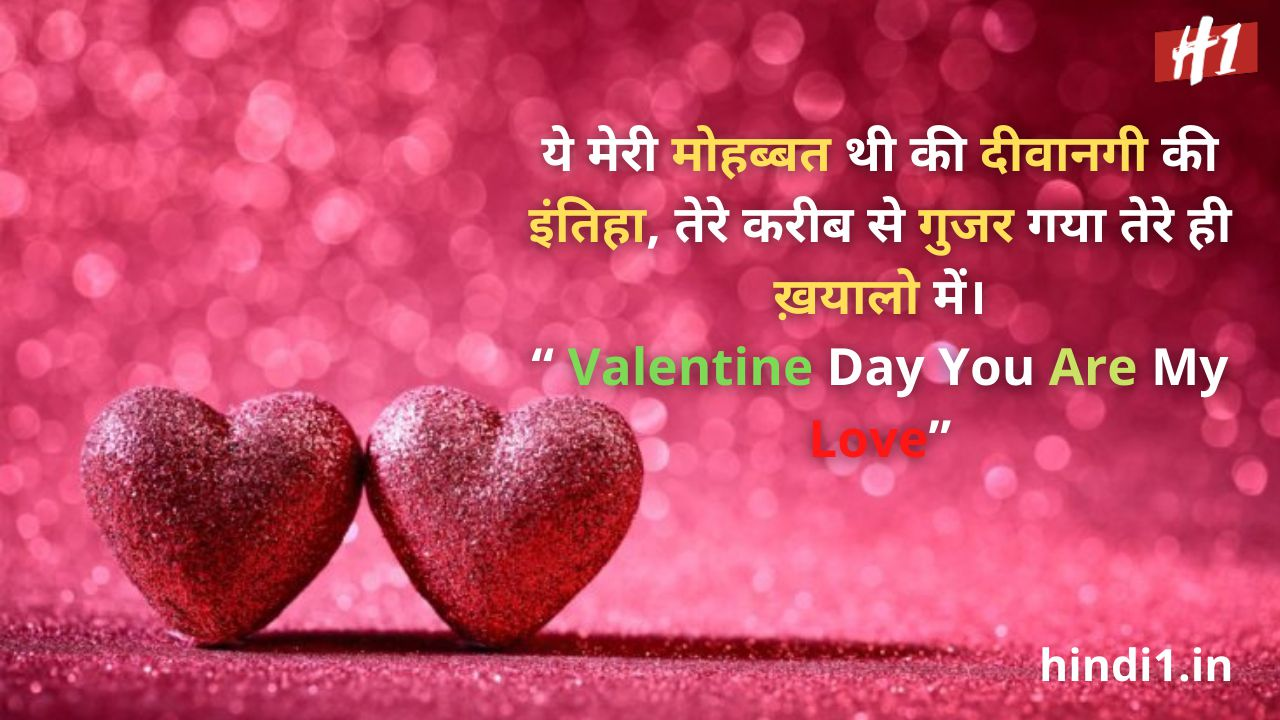 against valentine day quotes in hindi