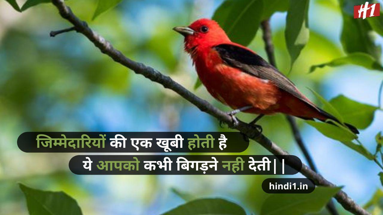 whatsapp status in hindi2
