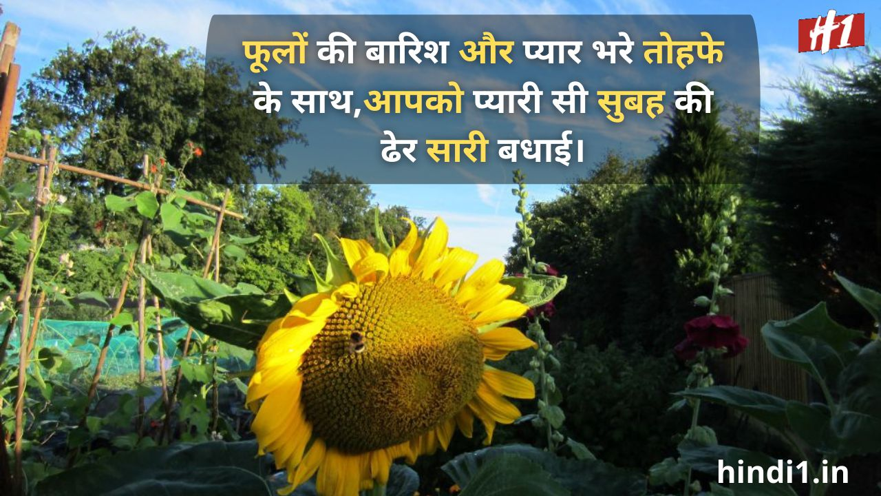 good morning 2 line status in hindi2