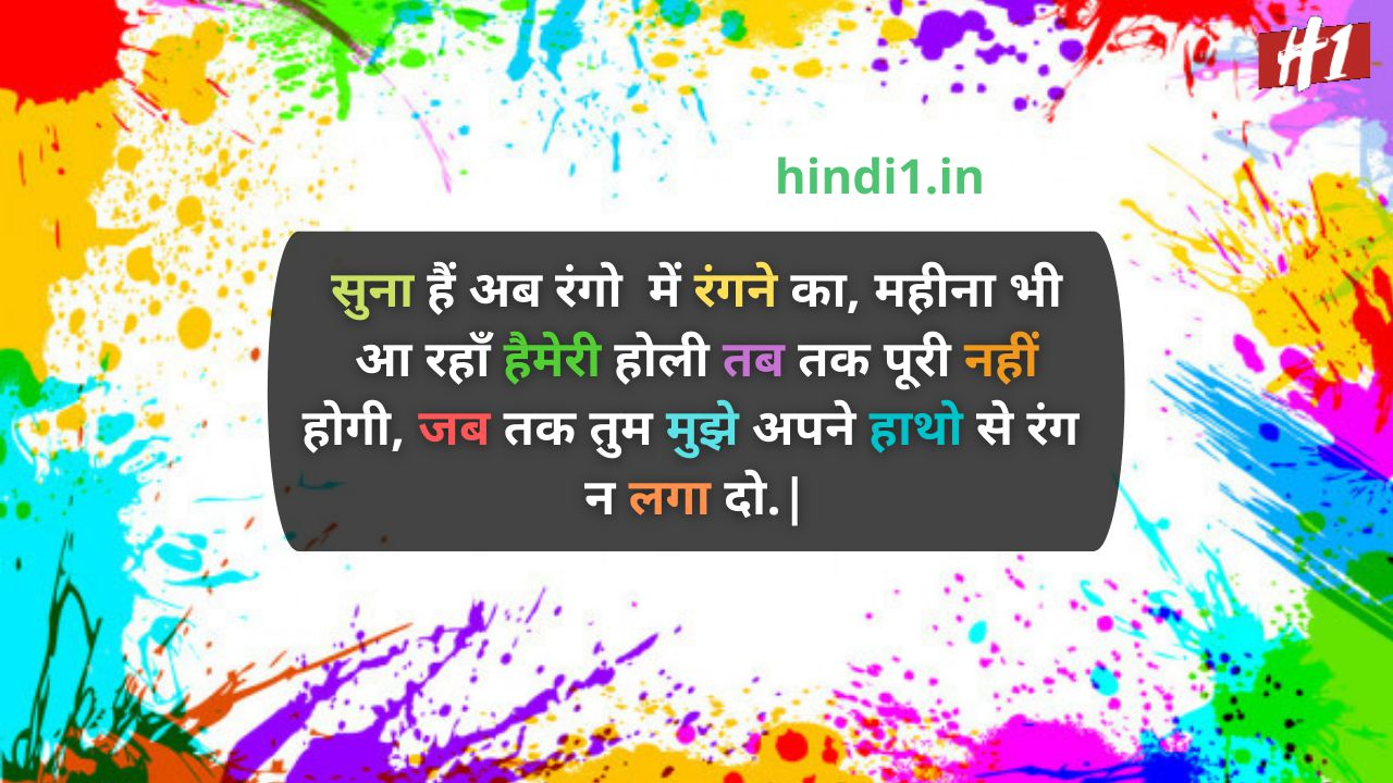 holi attitude status in hindi7