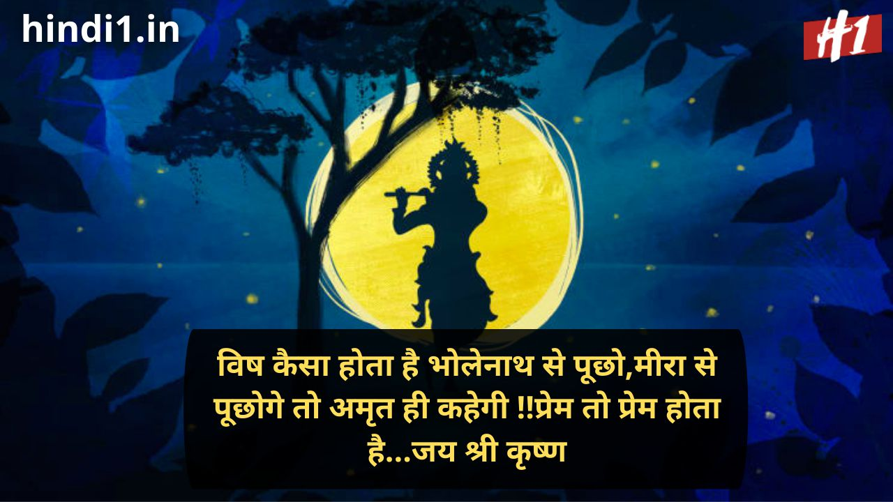 jai shree krishna in hindi status2