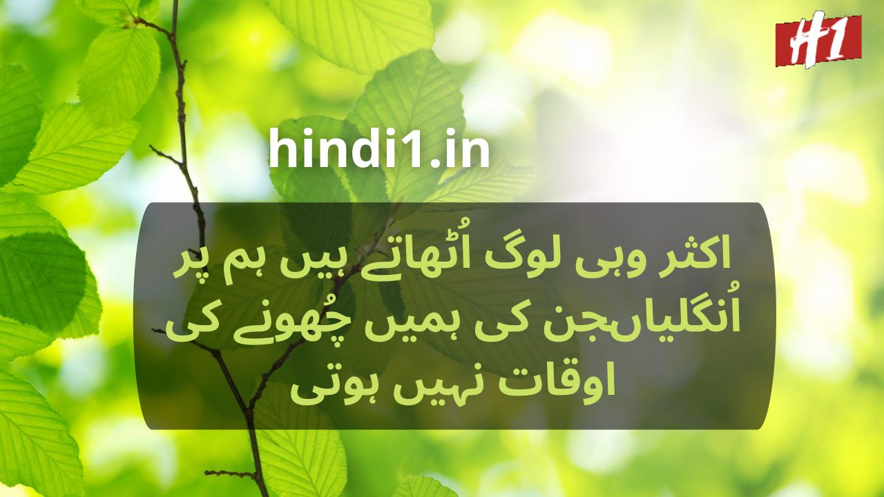 urdu status in hindi