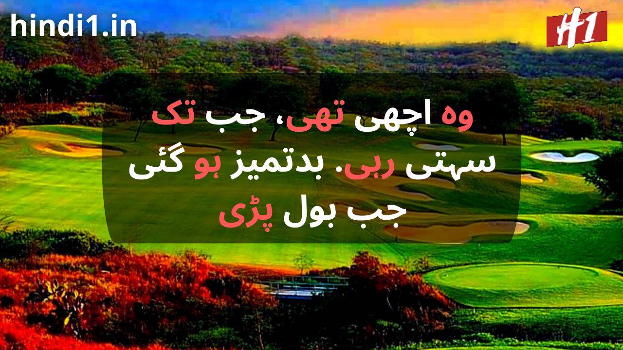 urdu status in urdu language2
