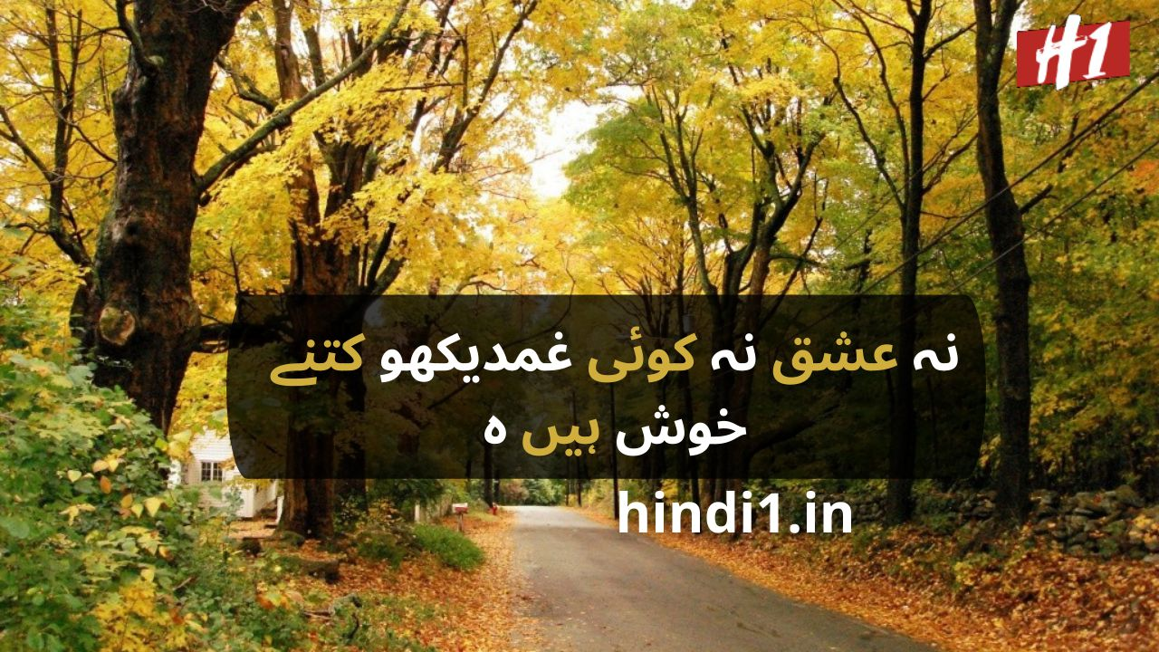 urdu status in urdu language5