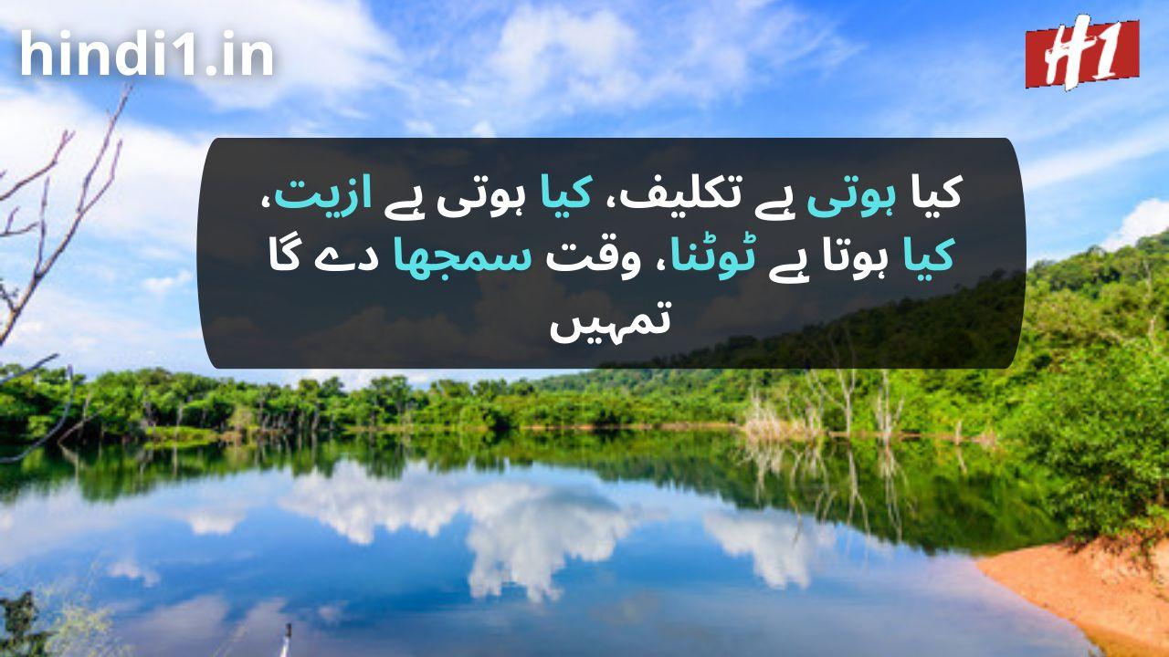 urdu dp status1