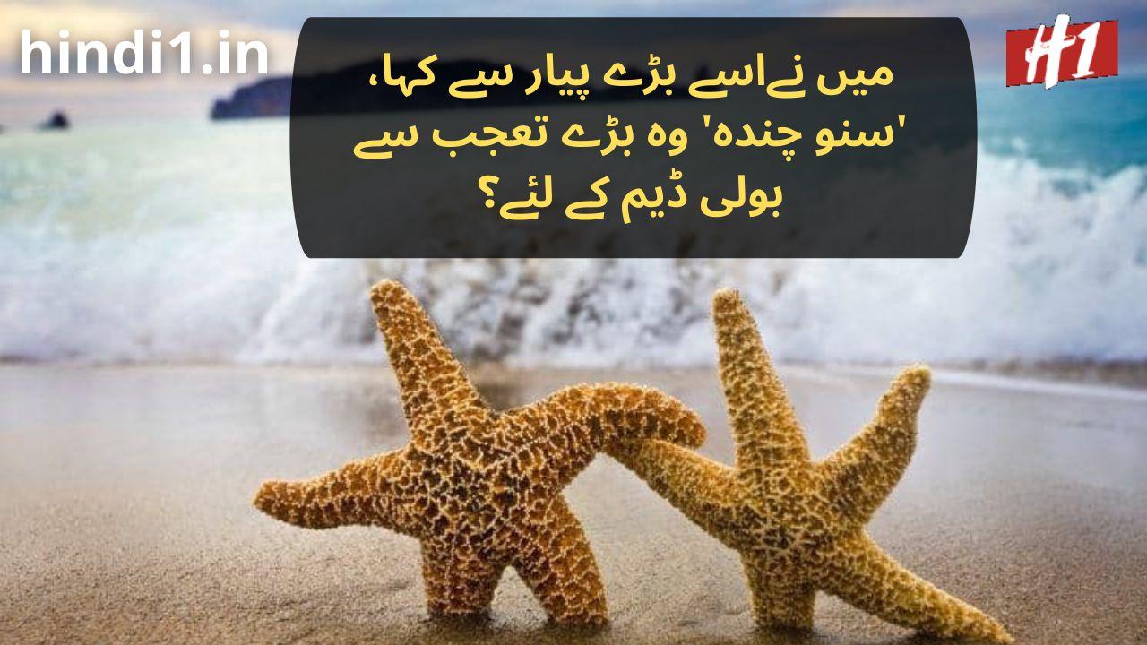 urdu dp status3