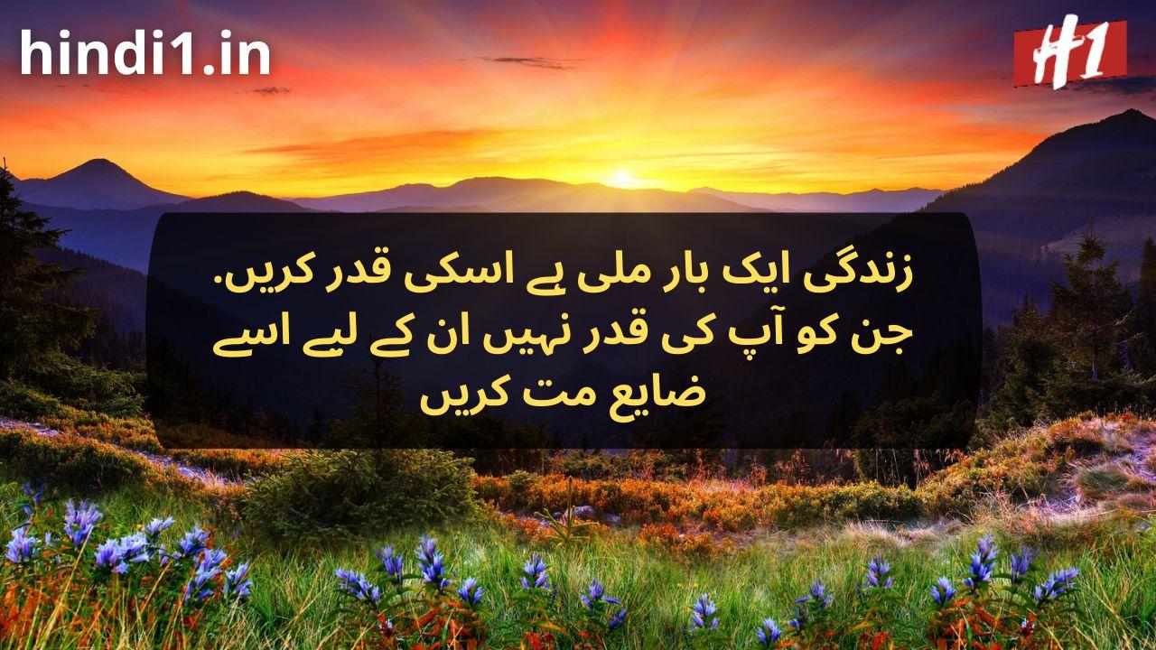 urdu dp status5
